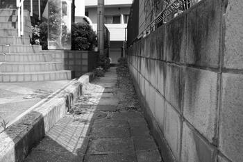東京セミナー 056.jpg